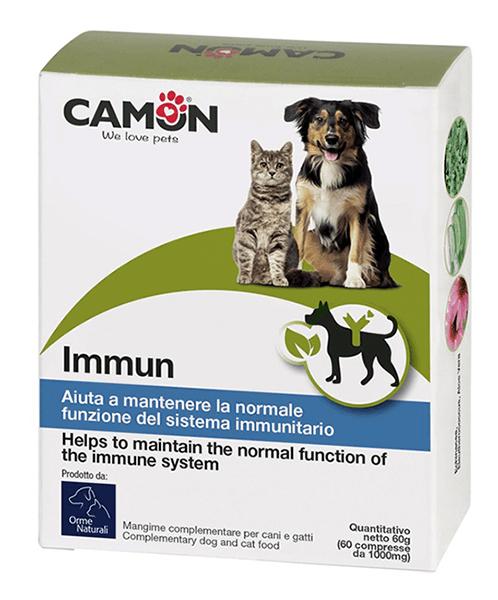 Camon Immum