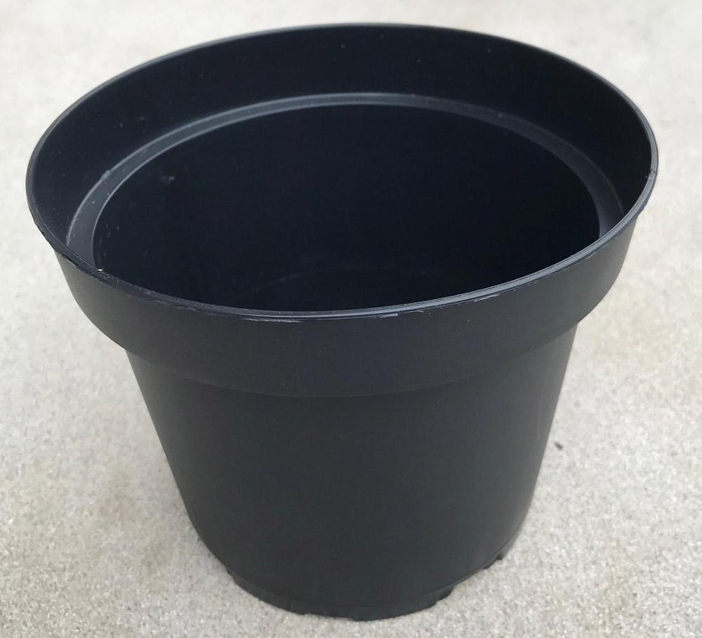 Maceta plástico negra 14 cm