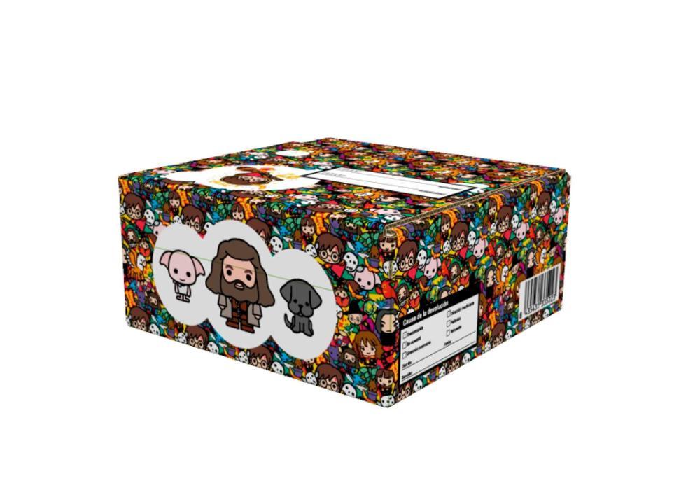 Caja pequeña Harry Potter