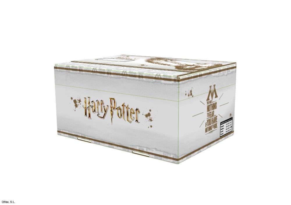 Caja grande Harry Potter